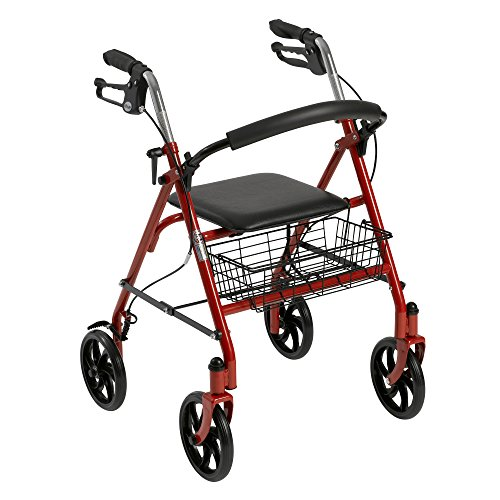 Drive Medical Four-Wheel Rollator with Fold-Up Removable Back Support